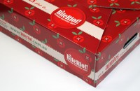 BiteRiot! apple box lid