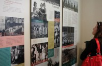 Fairbride Farm Exhibition panels installed at Molong Museum
