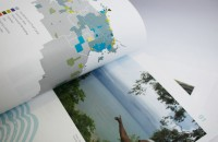 Details of chart design - Northern Land Council Annual Report