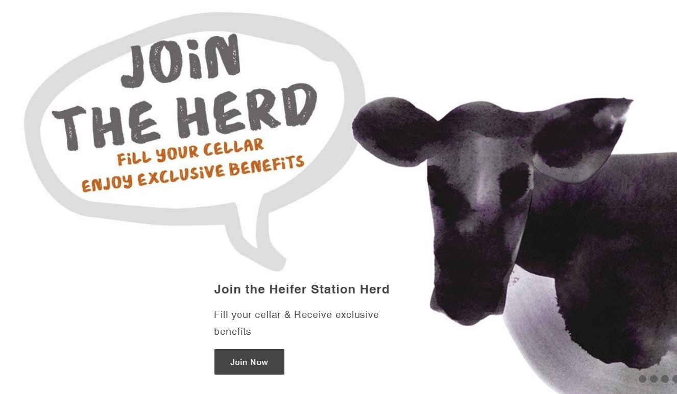 Banner design for Heifer Station website