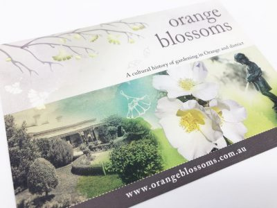 Orange Blossoms Exhibition 2010